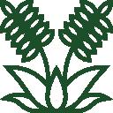 002-plant-1